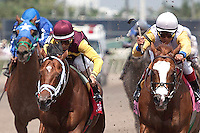 Travelin Man(left) with John Velazquez up and Jersey Town (right) ridden by Edgar Prado battle to the wire in the Sir Shackleton Stakes. Gulfstream Park Hallandale Beach Florida. 03-31-2012