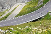 Alpine winding road