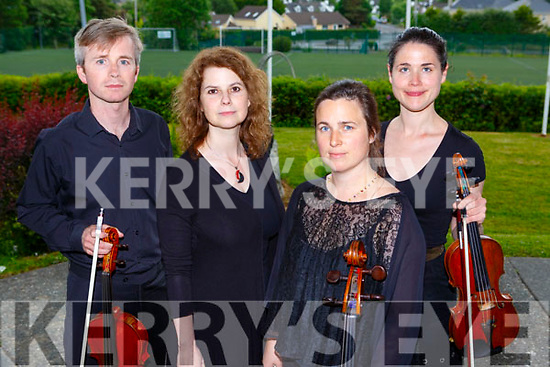 Cian O'Duill, Gabriela Mayer, Aoife Nic Athlaoich and Siun Milne who played for the crowds in the ISK at K fest on Satyrday evening
