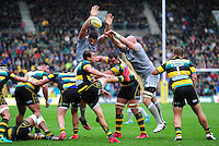 Lee Dickson of Northampton Saints box-kicks the ball as Charlie Ewels and Matt Garvey of Bath Rugby look to charge him down. Aviva Premiership match, between Northampton Saints and Bath Rugby on September 3, 2016 at Franklin's Gardens in Northampton, England. Photo by: Patrick Khachfe / Onside Images
