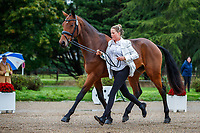 AUS-Isabel English presents Ivian HX during the First Horse Inspection for the CCI2*-L6YO. 2019 FRA-Mondial du Lion - FEI World Breeding Championships. Le Lion d'Angers. France. Wednesday 16 October. Copyright Photo: Libby Law Photography