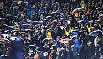 FUDBAL, BEOGRAD, 23. Nov. 2010. - Utakmica 5. kola Lige sampiona grupe H izmedju Partizana i Sahtjora / Partizan vs Shakhtar Donetsk UEFA Champions League Group H.. Foto: Nenad Negovanovic