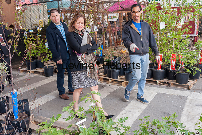 """NYC City Council Speaker Melissa Mark-Viverto, center, with NYRP employee John Douglas, right, at the Urban Garden Center in East Harlem in New York on Sunday, April 27, 2014 at one of the New York Restoration Project's tree giveaways.The giveaway is part of the MillionTreesNYC initiative started in 2007 as part of the city's long term sustainability program. The goal is to increase the  """"urban forest"""", comprised of street, park, public and private trees, to the betterment of the quality of life for New Yorkers.   (© Richard B. Levine)"""