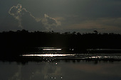 Amazon, Brazil. Sun reflected from the water of a rainforest river in the evening light.