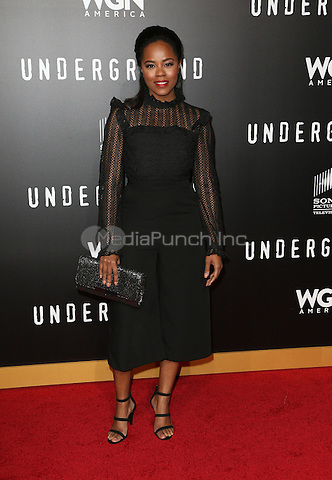 WESTWOOD, CA - February 28: Dawntavia Bullard, At The Regency Village Theatre In California on February 28, 2017. Credit: Faye Sadou/MediaPunch