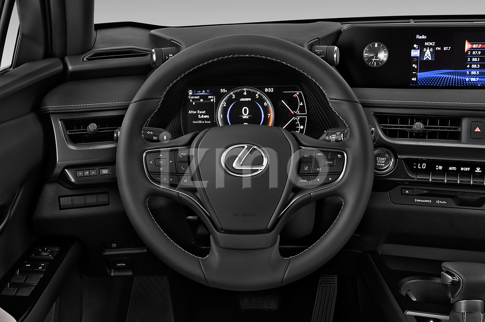 Car pictures of steering wheel view of a 2019 Lexus UX 200 5 Door SUV Steering Wheel