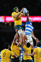 Adam Coleman of Australia wins the ball at a lineout. The Rugby Championship match between Argentina and Australia on October 8, 2016 at Twickenham Stadium in London, England. Photo by: Patrick Khachfe / Onside Images