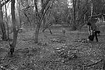 Itacarambi - Assocação dos iros do Município de Itacarambi