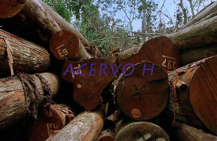 A maior opera&ccedil;&atilde;o feita at&eacute; ent&atilde;o na Amaz&ocirc;nia resultou na apreen&ccedil;&atilde;o de 9 mil m&sup3;de mogno. O Ibama encontrou esta grande quantidade de madeira escondida no meio da floresta. A a&ccedil;&atilde;o durou mais de uma semana contou com o apoio do Greenpeace e 6 aeronaves (3 helic&oacute;ptero e 3 avi&otilde;es). A opera&ccedil;&atilde;o, com custo de cerca de R$800.000,00.<br /> Uruar&aacute;, Par&aacute; , Brasil.<br /> &copy;Foto Paulo Santos/Interfoto<br /> 30/10/2001