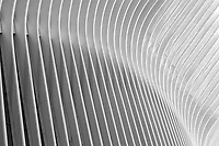 A close-up view of the ribbed wings of the Oculus World Trade Center Transportation Hub in New York City.