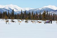 Michelle Phillips runs down a swamp two miles after leaving the the Kaltag checkpoint with the Nulato Hills in the background during the 2010 Iditarod