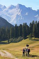 Italy, South Tyrol, Alto Adige, hikers at Dolomites Trekking Trail Nr. 3, Prato Piazza-Rifugio Vallandro