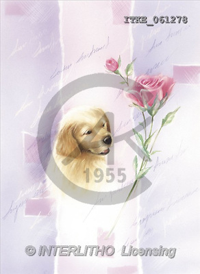 Isabella, REALISTIC ANIMALS, paintings(ITKE061278,#A#) realistische Tiere, realista, illustrations, pinturas