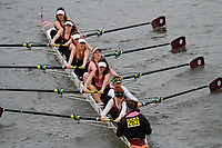 Crew: 262 St Catharines College (Cambridge) Boat Club<br /> <br /> Women's Head of the River (WeHoRR) 2017<br /> <br /> To purchase this photo, or to see pricing information for Prints and Downloads, click the blue 'Add to Cart' button at the top-right of the page.