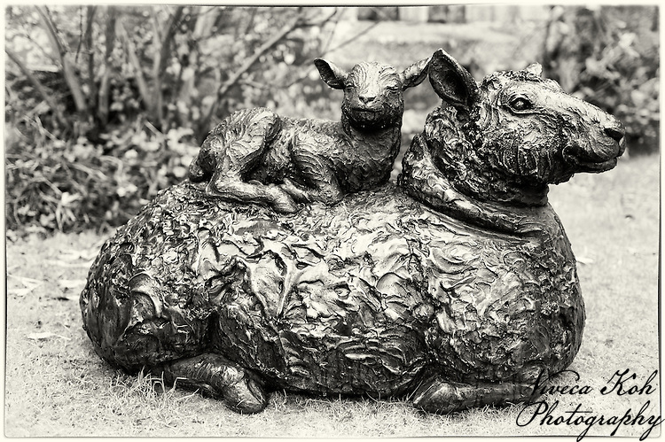 Sheep sculpture at Cotehele