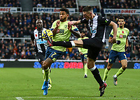 9th November 2019; St James Park, Newcastle, Tyne and Wear, England; English Premier League Football, Newcastle United versus AFC Bournemouth; Ciaran Clark of Newcastle United clears the ball to deny Joshua King of AFC Bournemouth a chance at goal - Strictly Editorial Use Only. No use with unauthorized audio, video, data, fixture lists, club/league logos or 'live' services. Online in-match use limited to 120 images, no video emulation. No use in betting, games or single club/league/player publications