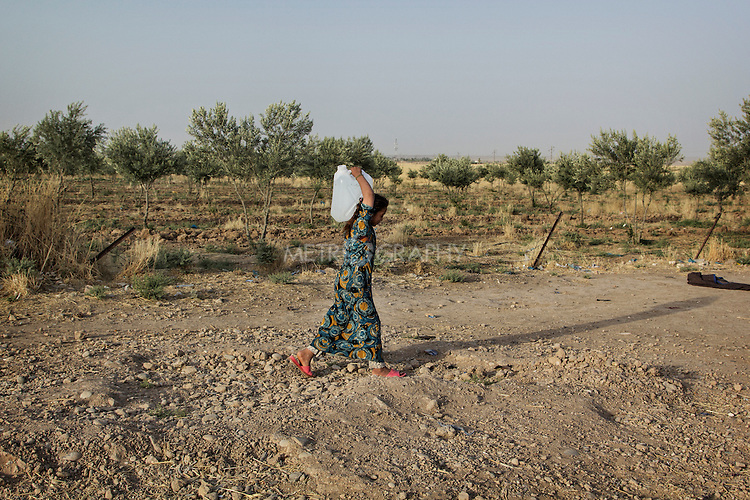 04/07/2015 -- Dibaga-Makhmur-, Iraq -- A young IDP from Jarallah village carries a jerry can filled with water back to the chicken farm where she has been living since January 2015 along with 260 people from the same village. Like the other villagers, she was uprooted by her hometown last winter after a siege of 50 days during which Peshmerga and ISIS fighters confronted each other in and around the village.