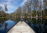 SILVER SPRING, FLA. - FEBRUARY 25, 2012: Spring fed waters flow on the Silver River on February 25, 2012 in Silver Spring, Florida.  Photo by Matt May