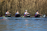 Crew: 107   Op 4+ BAND-2   Abingdon School Boat Club   Abingdon School C<br /> <br /> Wallingford Head 2017<br /> <br /> To purchase this photo, or to see pricing information for Prints and Downloads, click the blue 'Add to Cart' button at the top-right of the page.