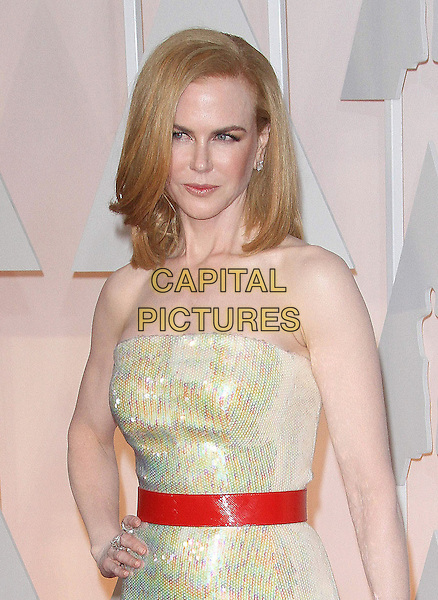 22 February 2015 - Hollywood, California - Nicole Kidman. 87th Annual Academy Awards presented by the Academy of Motion Picture Arts and Sciences held at the Dolby Theatre. <br /> CAP/ADM<br /> &copy;AdMedia/Capital Pictures Oscars