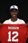 Bodison