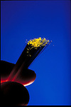 hand holding fiber optic light