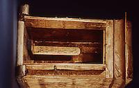 Egypt:  Golden Shrine--wood overlaid with gold.  Treasures of Tutankhamun, Cairo Museum.  MMA 1976.