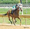 winning at Delaware Park on 9/9/15