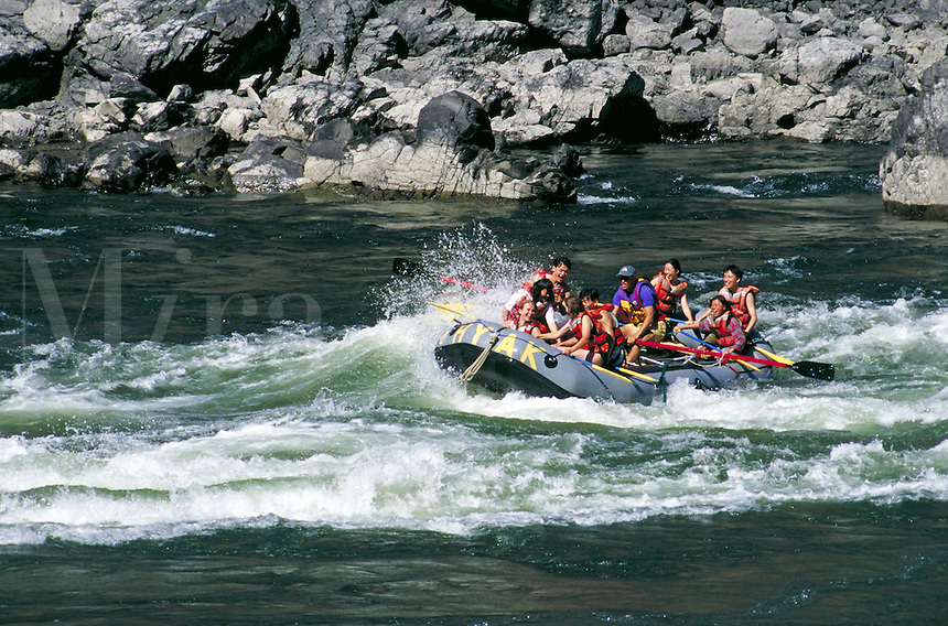 adventurers enjoy rapids in white water raft on Thompson River near Spences Bridge. Recreation, water, river, danger, safety, wave. British Columbia Canada Cariboo.