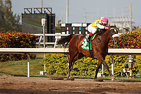 Grace Hall with jockey Javier Castellano in the clear on their way to a 6 1/2 length victory in the Gulfstream Oaks. Gulfstream Park Hallandale Beach Florida. 03-31-2012. Arron Haggart/Eclipse Sportswire