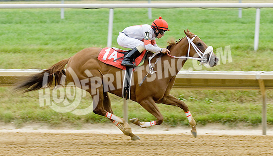 Wildcat Code winning at Delaware Park on 7/9/12