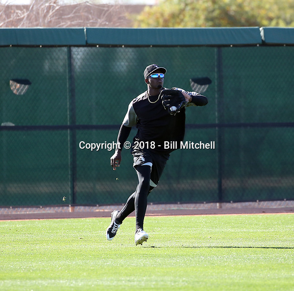 Luis Robert of the Chicago White Sox participates in a pre-season hitting camp at the White Sox training facility at Camelback Ranch on January 17, 2018 in Glendale, Arizona (Bill Mitchell)