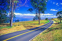 Driving the scenic roads of upcountry Maui is a great way to see another side of this beautiful island. This road is highway 37 and goes up to the small community of Ulupalakua and the Tedeschi Winery.