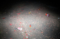 Empty fireworks and other garbage litter a street in Nanjing, Jiangsu, China, on the night of Lunar New Year celebrations. Lunar New Year is also known as Chinese New Year.  2009 is the Year of the Ox, the Year of the Cow, or the Year of the Bull, according to the Chinese zodiac.  Niu is the Mandarin word for ox/cow/bull.