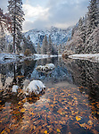 Yosemite National Park, CA: Calm reflections along the Merced River after a snowfall in late fall.