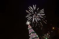 SAO PAULO, SP - 26.11.2016 - ARVORE-NATAL-SP - Inauguração da Árvore de Natal na noite deste Sábado (26), no Parque do Ibirapuera, zona sul de São Paulo.<br /> <br /> (foto: Fabricio Bomjardim / Brazil Photo Press)