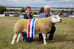 CR0002852 Kinross Show. David McKerrow, Northnochnary Farm, Freuchie, with his Champion Sheep Interbreed, Champion Texil, Overall Champion of Show. 11 Aug 2018 © Copyright photograph by Tina Norris. Contact Tina on 07775 593 830 info@tinanorris.co.uk All print sales via Tina Norris. www.tinanorris.co.uk http://tinanorris.photoshelter.com