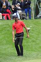 Alvaro Quiros (ESP) 2nd chip onto the 10th green during Friday's storm delayed Round 2 of the Andalucia Valderrama Masters 2018 hosted by the Sergio Foundation, held at Real Golf de Valderrama, Sotogrande, San Roque, Spain. 19th October 2018.<br /> Picture: Eoin Clarke | Golffile<br /> <br /> <br /> All photos usage must carry mandatory copyright credit (&copy; Golffile | Eoin Clarke)