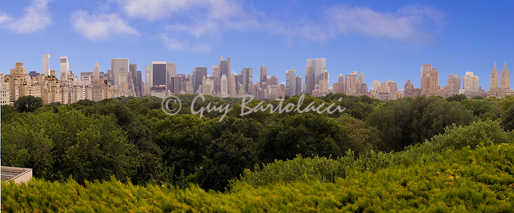 Central Park Skyline Panorama