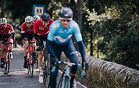 Tim Wellens (BEL/Lotto-Soudal) biting through the pain to stay on Alejandro Valverde's (ESP/Movistar) wheel<br /> <br /> Trofeo Lloseta - Andratx: 140km<br /> 27th Challenge Ciclista Mallorca 2018