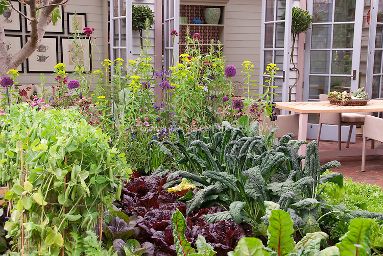Growing Your Own Food at Home