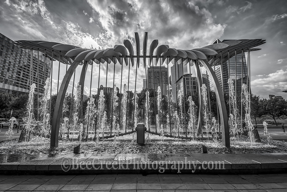 This is a new sculpture in Houston on the Avenida plaza in front of the George Brown Convention Center in downtown across from the Discocery Green park done in black and white.   This wonderful sculpture with water fountain which is 60 feet wide by 30 feet tall has this kinetic wing which move as though they are in motion and it is meant to represent migration as those who migrate to Houston seeking a better life.  The wings of the sculpture mesmerizing movement of the undulating surfaces creates a new focus for those who visit and a new iconic destination. From this angle you can see the Discovery Green park and the cities high rise buildings in the area.