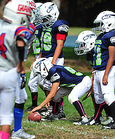 2016 PJFL Seahawks action. (Photo by AGP Photography)