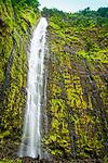 Waimoku Falls, Haleakalā National Park, Maui, Hawaii.