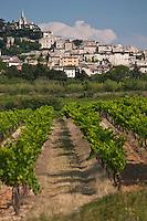 Europe/France/Provence-Alpes-Côte d'Azur/84/Vaucluse/Lubéron/Bonnieux: Le village perché et son vignoble