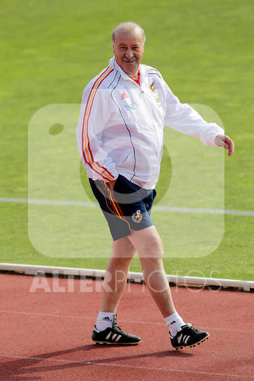 MADRID (25/05/09).- The Spanish Soccer national training session.  Vicente del Bosque, coach...PHOTO: Cesar Cebolla / ALFAQUI