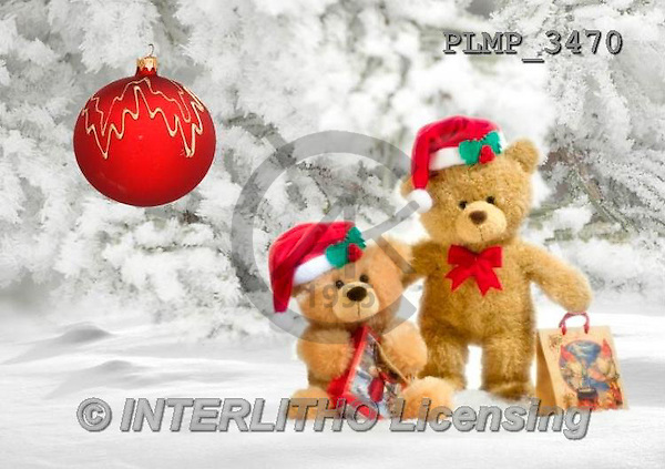 Marek, CHRISTMAS ANIMALS, WEIHNACHTEN TIERE, NAVIDAD ANIMALES, teddies, photos+++++,PLMP3470,#Xa# in snow,outsite,