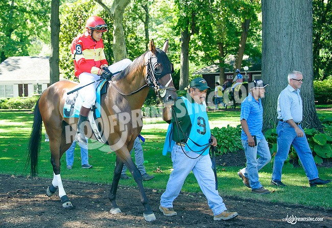 Chief of Hearts before The Longines Gentlemans International Fegentri race at Delaware Park on 9/14/15 - Mr. Brendan Brooks aboard