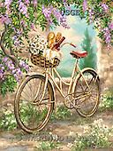 Dona Gelsinger, STILL LIFE STILLLEBEN, NATURALEZA MORTA, paintings+++++,USGE1556,#I# ,bicycles, ,seaside, ,everyday