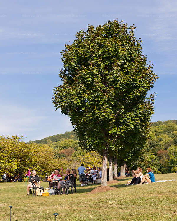 Families enjoy picnics and wine under trees in the yard at Breaux Vineyards.